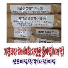 [용궁수산] 기장특산품 기장바다 해녀가 채취한 자연산 돌미역(95Cm,10가닥,550~650g)/대각미역/장각미역